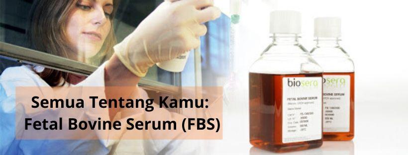Semua Tentang Kamu: Fetal Bovine Serum (FBS)