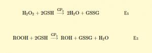 Reaksi reduksi hidrogen peroksida oleh GSH-Px