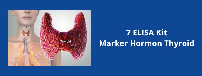 7 Elisa Kit Marker Hormon Thyroid