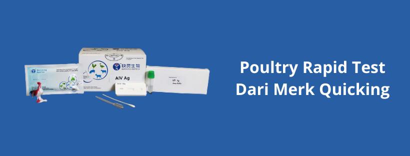 Poultry Rapid Test dari Merk Quicking