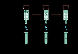 Kromatografi penukar ion dalam purifikasi protein